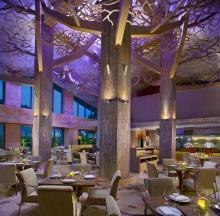 Equarius Hotel Sentosa - Restaurant