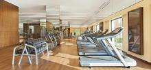 Fairmont The Palm, Dubai - Gym